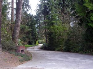 How to Maintain Your Driveway